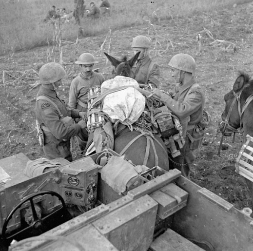 Unidentified Canadian soldiers with their Universal Carrier and a mule carrying supplies, Italy, 9-18 October 1943. Credit: Capt. Alex M. Stirton / Canada. Dept. of National Defence / Library and ArchivesCanada / PA-205160