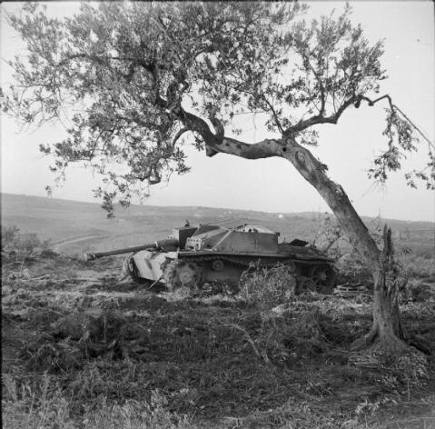 The Sangro River November 1943: A German Mk III Special tank knocked out near San Salvo during the advance to the Sangro. © IWM (NA 8801)