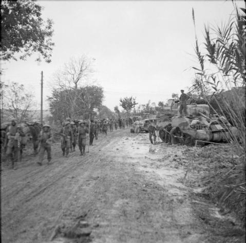 The Sangro River November 1943: A mule train carrying ammunition passes a bogged down Sherman tank en route in the forward positions in the Sangro area.  © IWM (NA 8942)